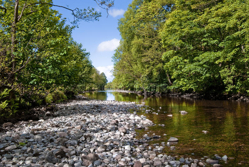 Small river stock images