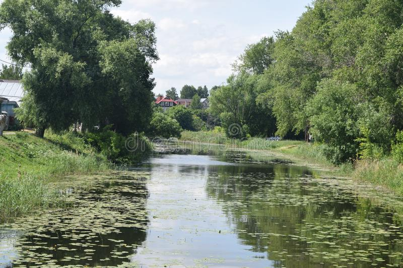 A small river with a calm flow surrounded by trees. Russian landscape. Suzdal, Russia.  stock images
