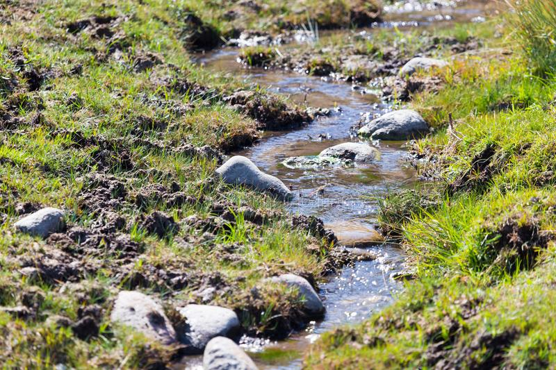 Small river in nature royalty free stock photography