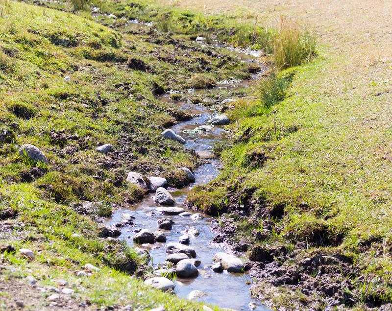 Small river in nature stock photos