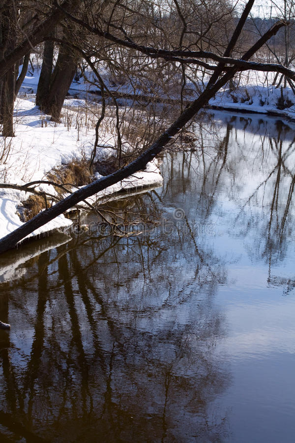 Download Small river in spring-time stock photo. Image of north - 13420366
