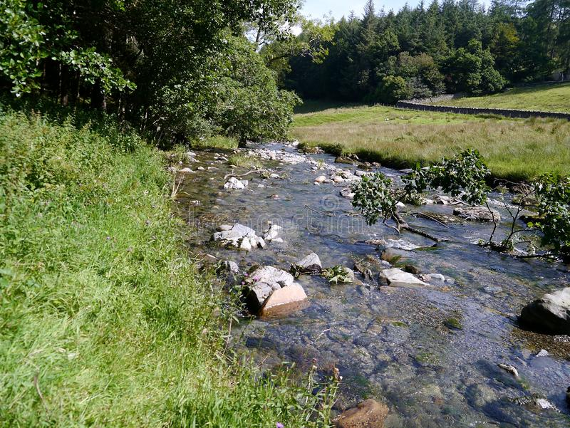 Small river with stones. Stream babbling through rocks in pure nature royalty free stock photography
