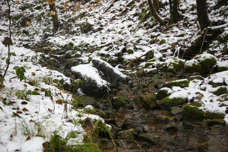 A small river in winter, snow stock image