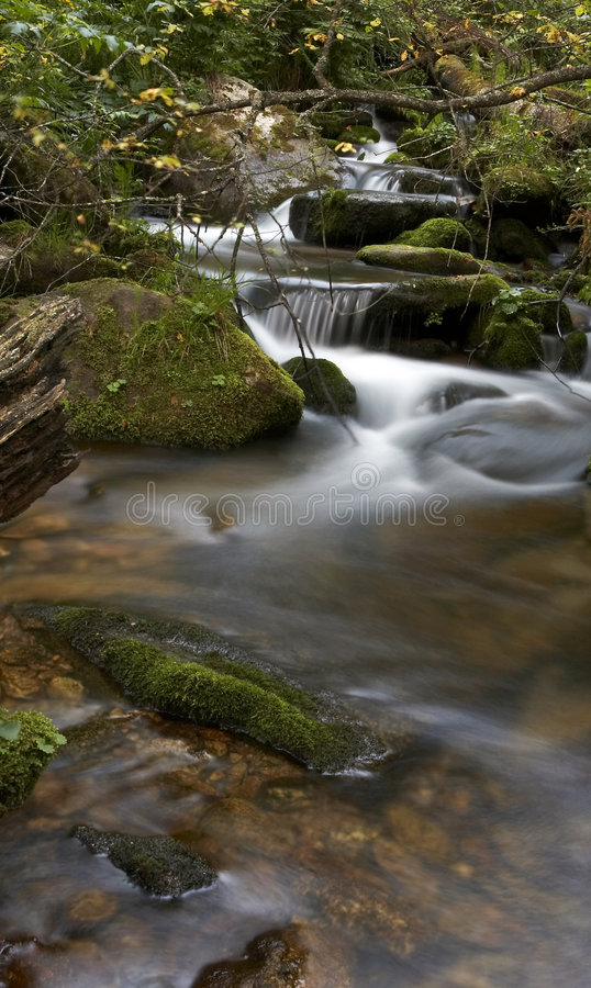 Download Small rivers stock image. Image of month, river, small - 7556935