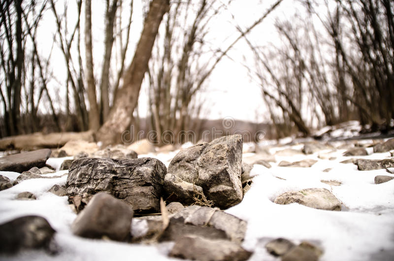 Small rocks in snow forest. Small rocks/stones in the snow near a creek in a forest stock image