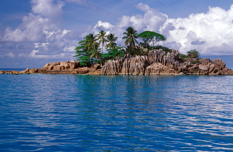 Small rocky island with palm trees stock image