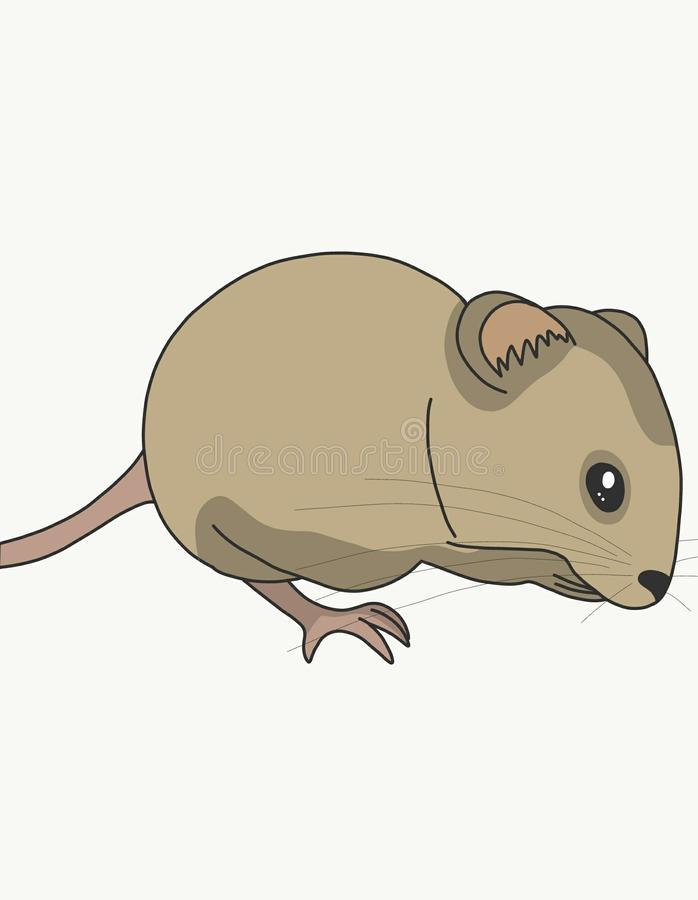 A field mouse eats. A small rodent, field mouse decided to have Breakfast very tasty piece of grain royalty free illustration