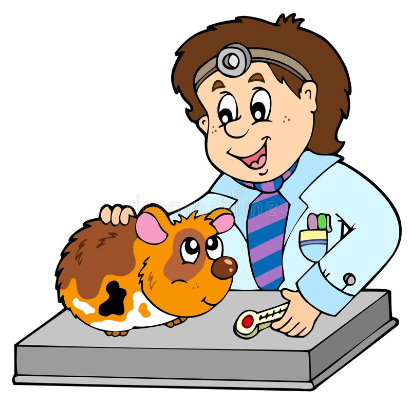 Download Small Rodent At Veterinarian Stock Vector - Image: 14200491