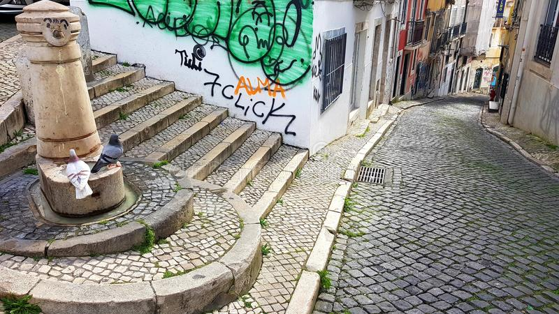 Streets of Lisbon with flying birds royalty free stock images