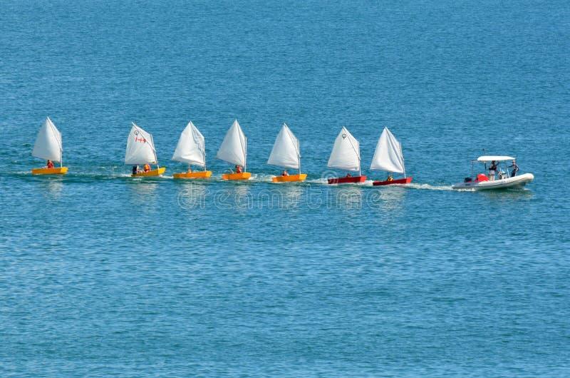 Small sailing boats royalty free stock photo