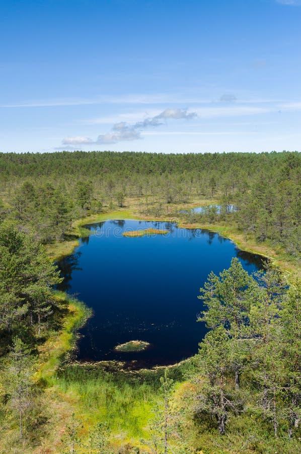Small scenic lake at Viru bog stock images