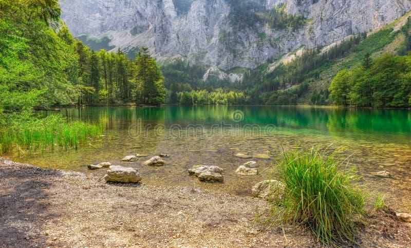 Hidden Green Lake Austria Mountains stock photos