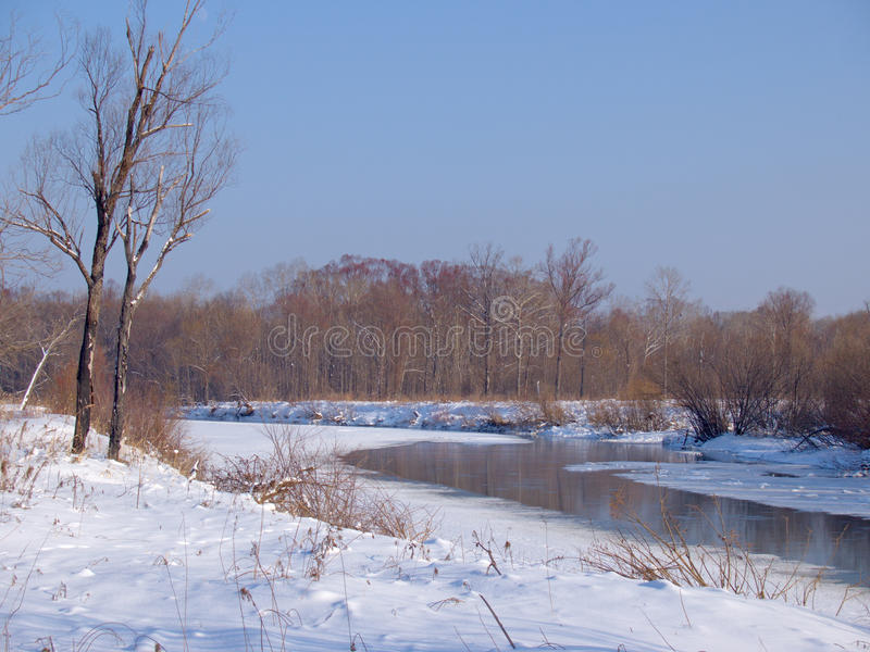 Small small river in the winter royalty free stock images