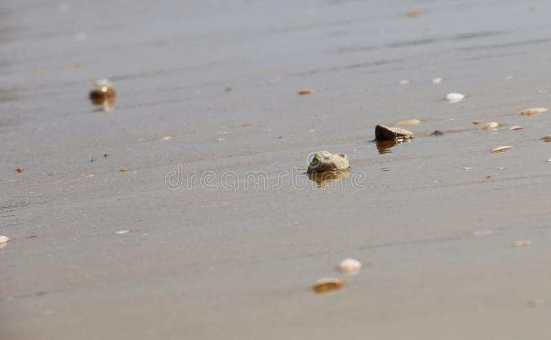 Small smooth polished stones on the beach in the sand on background of sea, waves and sky. Summer shiny texture copy space stock photo