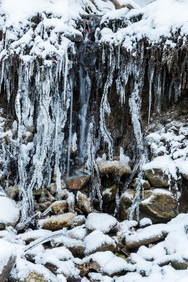 A small spring stream in a forest among stones in the snow and tree roots covered with ice crystals. Winter landscape. royalty free stock images
