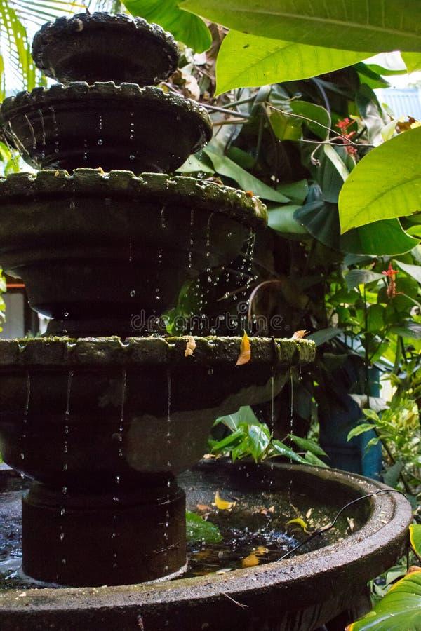Small stone fountain in tropical garden. Fountain in vase in asian backyard. Zen and peace concept. stock photos