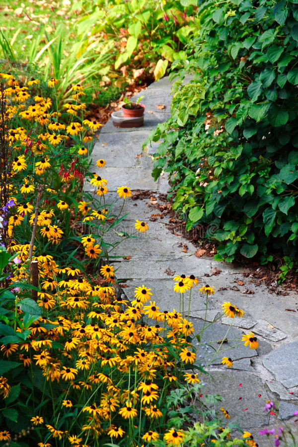 Small stone path in the garden. With beautiful yellow flowers royalty free stock photo