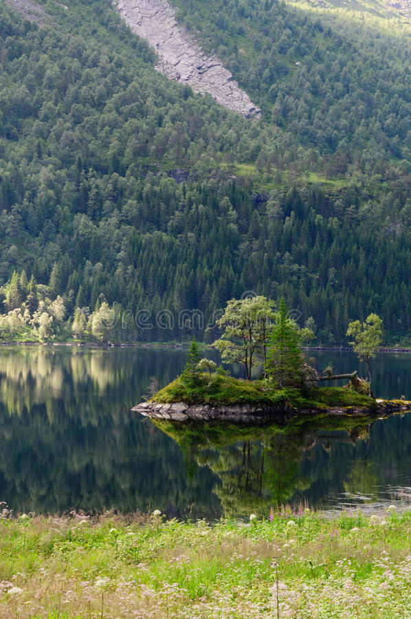 Small stony and pine island with reflection royalty free stock photography