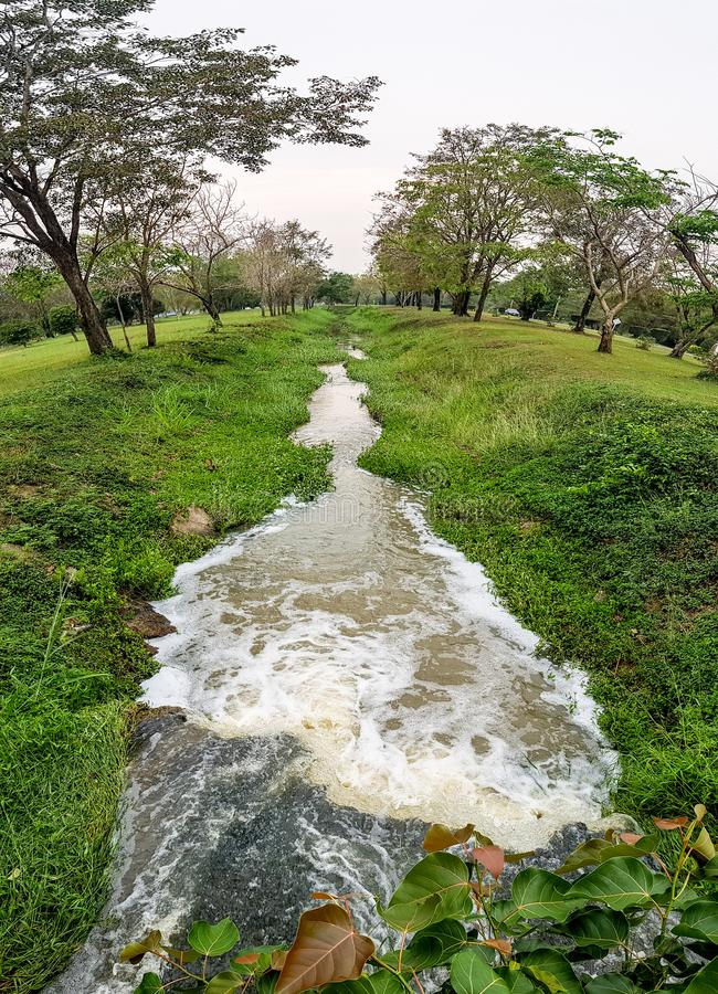 Small straight waterway pass through botanical garden in tropical area. Fish Eye angle stock photos
