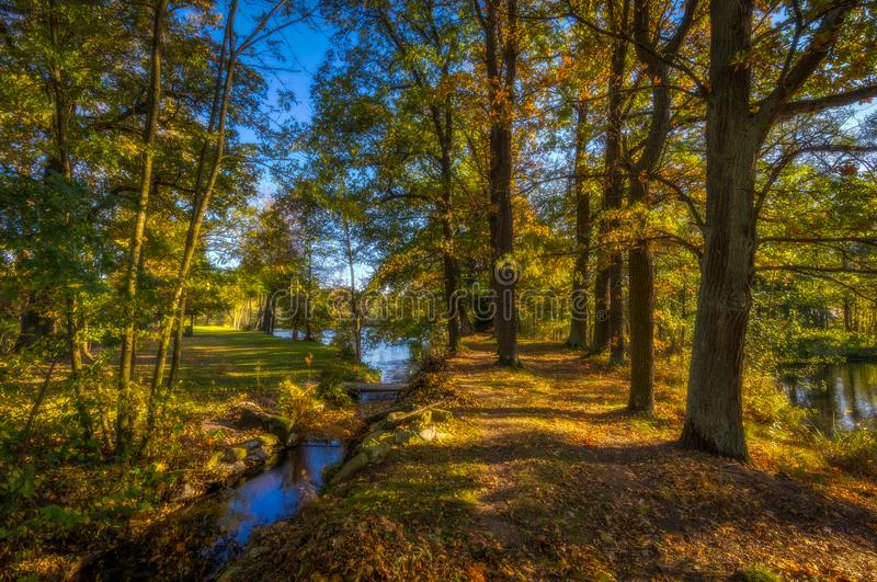 Small stream flowing into lake with path full of colorful fallen leaves with big old trees stock images