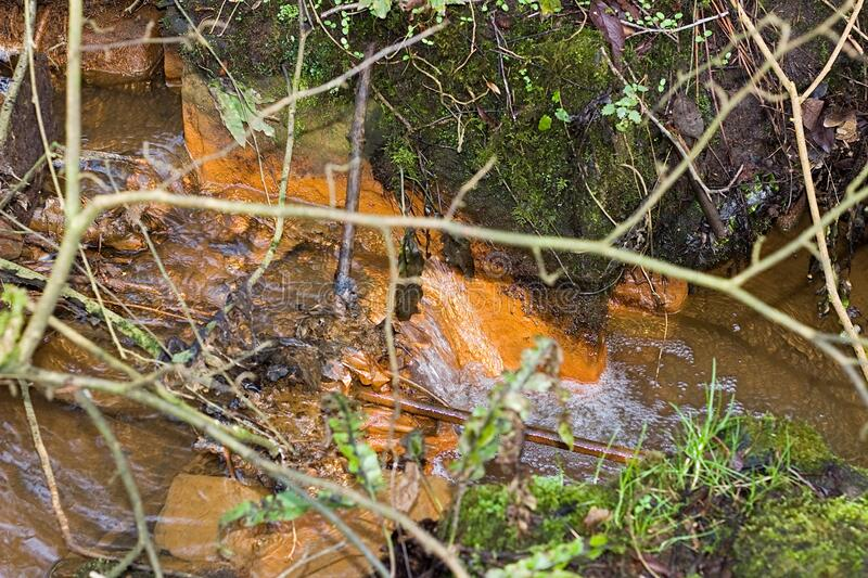 Small Stream In a forest with orange Iron Sipping in  water. Small Stream In a forest with orange Iron Bacteria in the water royalty free stock images