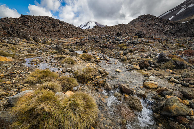 Small stream with Mt Ngauruhoe at the background royalty free stock images