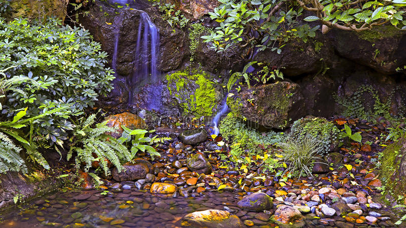Small stream waterfall royalty free stock image