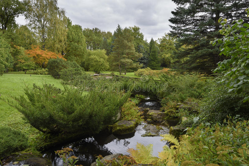 The small stream in the woody park. The small stream proceeding in the autumn woody park royalty free stock photos