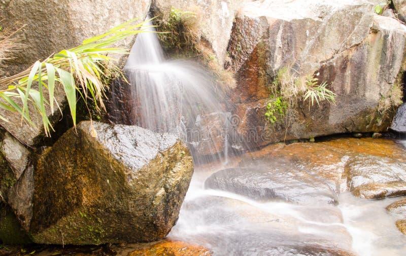 Small streams stock photos