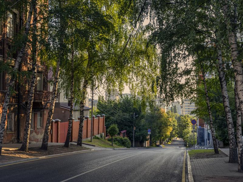 A small street in city. A small street in a big city. Asphalt road with two-way traffic. Large trees grow on the sidewalk. The dawn sun illuminates the wall of stock images