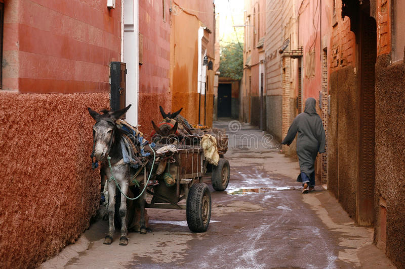 Small street in Marrakech's medina. Morocco. Small street in Marrakech's medina (old town). In Marrakech the houses are traditionally pink. Morocco stock photos