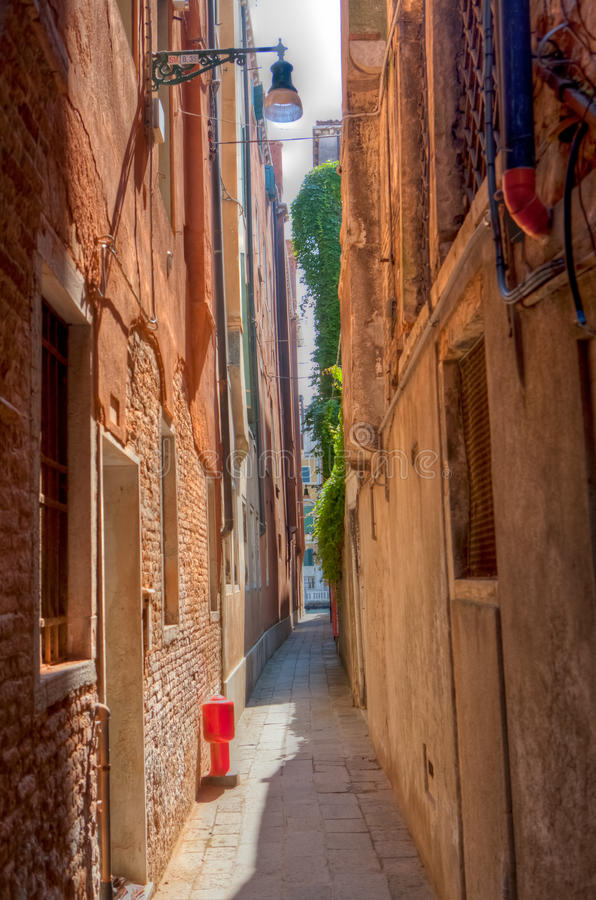 Small street Venice Venezia, Italy, Italia. Small street in Venice in the sun with orange colored houses and some leaves, Venezia, Italy royalty free stock images