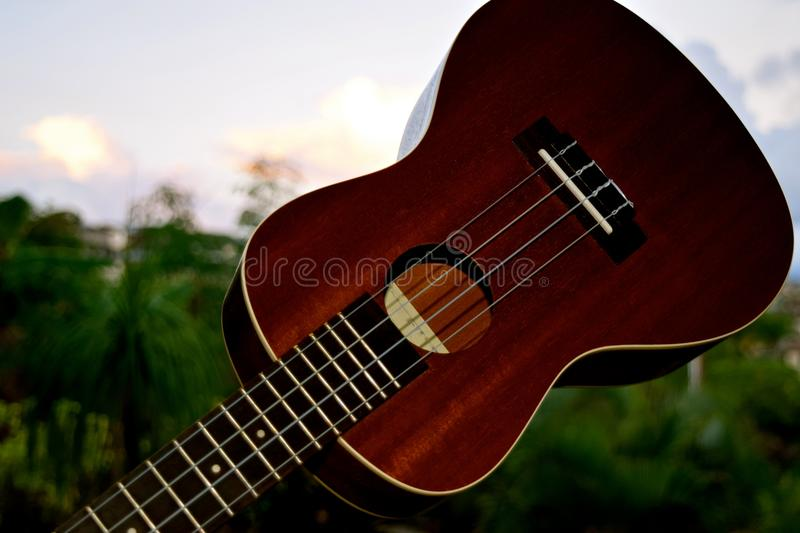 Ukulele Closeup. A small 4 stringed musical instrument that was popularized when it was introduced to Hawaii royalty free stock photo