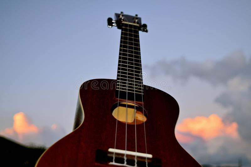 Ukulele Closeup. A small 4 stringed musical instrument that was popularized when it was introduced to Hawaii royalty free stock images