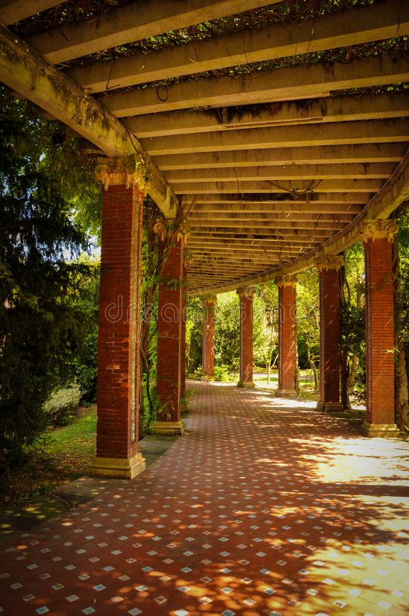 Small Stroll on a Small Shaded Path royalty free stock images
