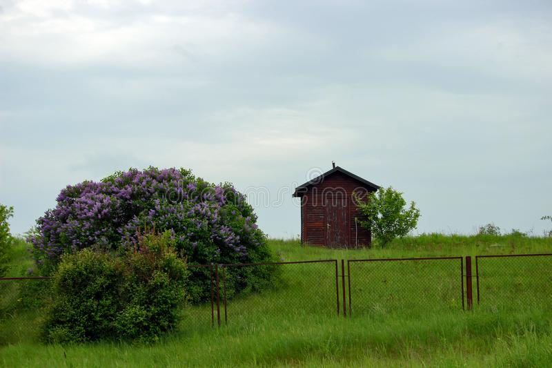 A small tiny brown house in a field, surrounded by spring nature. Photo. royalty free stock photos