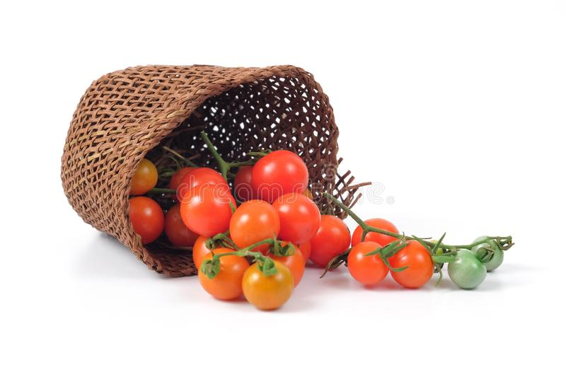 Small Tomato spill out of basket.Food. Concept royalty free stock image