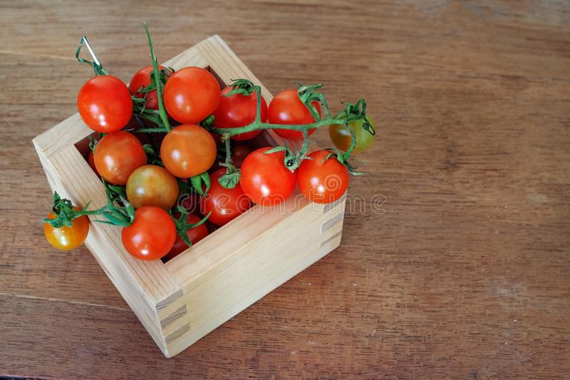 Small Tomato spill out of wood box.Food stock images
