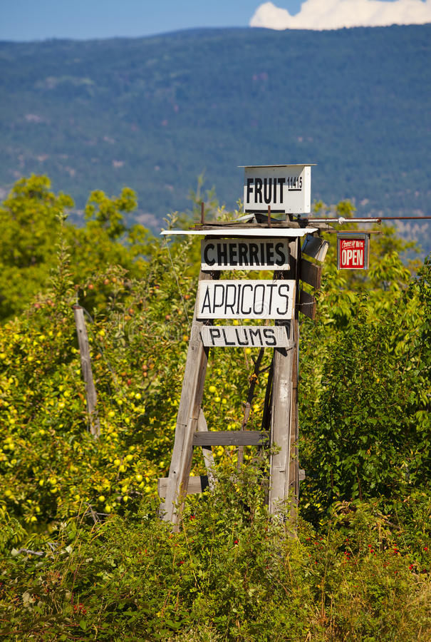 Small Town Roadside Orchard Sign royalty free stock images