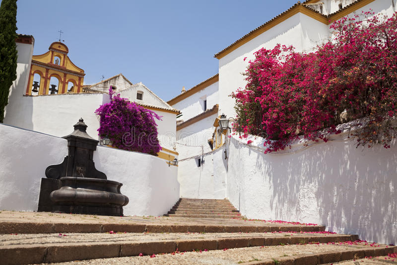Small town street. Picture of a small old street from Cordoba, a town in Andalusia, Spain. The white walls and the flowers in the streets are very traditional in royalty free stock images