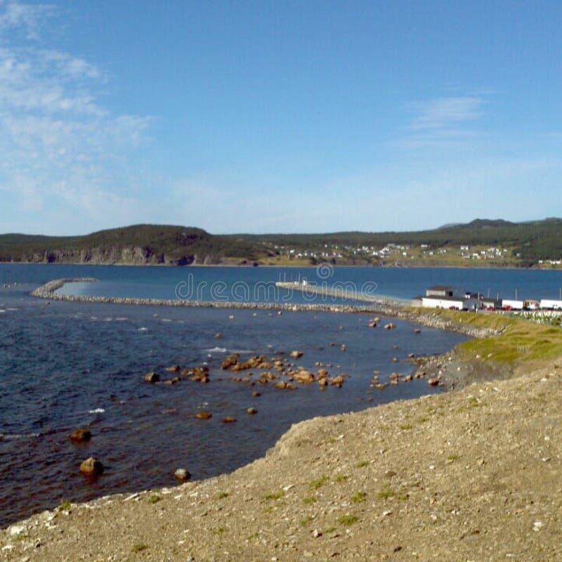Newfoundland royalty free stock photography