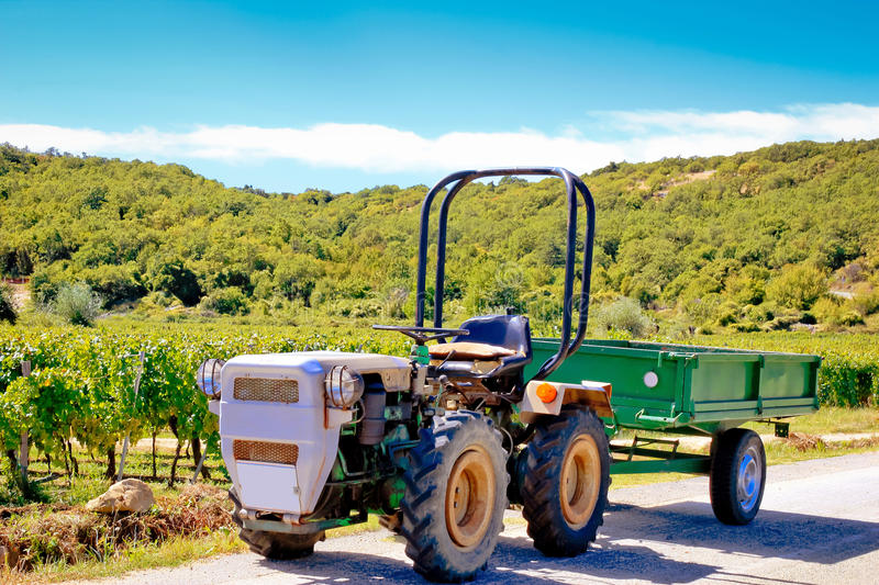 Small tractor by the mediterranean vineyard. Krk island, Croatia royalty free stock images