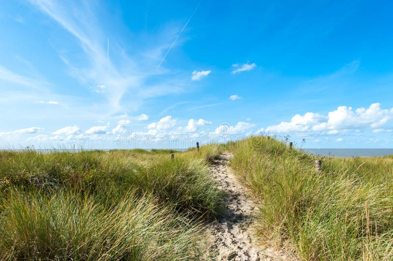 Small trail on top of grassy sand dune stock photography