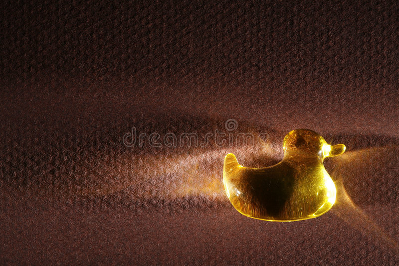 Small Transparent Duck stock image. Image of translucent - 4166373