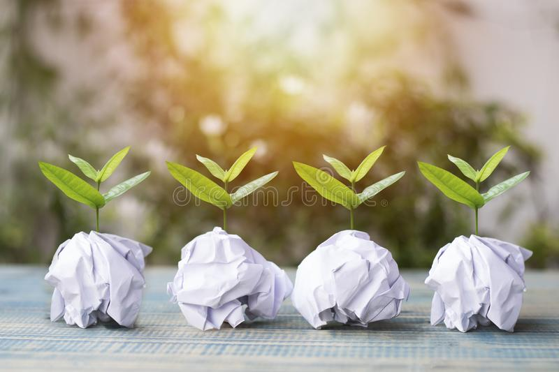 Small tree grow up on paper recycle, concept as save World environment day reforesting eco bio arbor CSR ESG ecosystems reforest. Ation concept on wood royalty free stock images