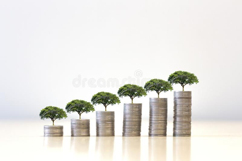 Small tree growing on Money coin stack .Saving money concept. finance sustainable royalty free stock image