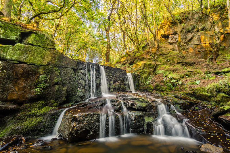 Small Trickling Waterfall In Sunny Forest. Small trickling waterfall in a remote woodland forest taken on a nice summers day. The waterfall is called Jepson's stock image