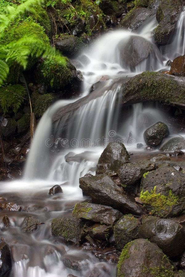 Small tropical waterfall. royalty free stock photos