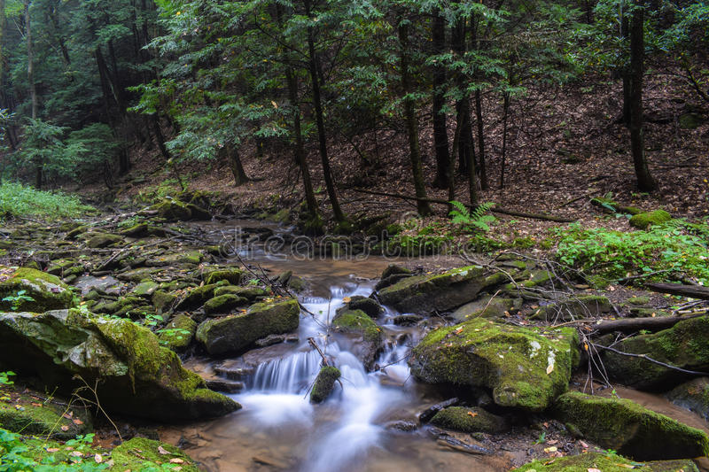 A small trout stream in the Appalachian Mountains. A small fast flowing native Brook Trout Stream flowing through a heavily forested region of the northern royalty free stock photo