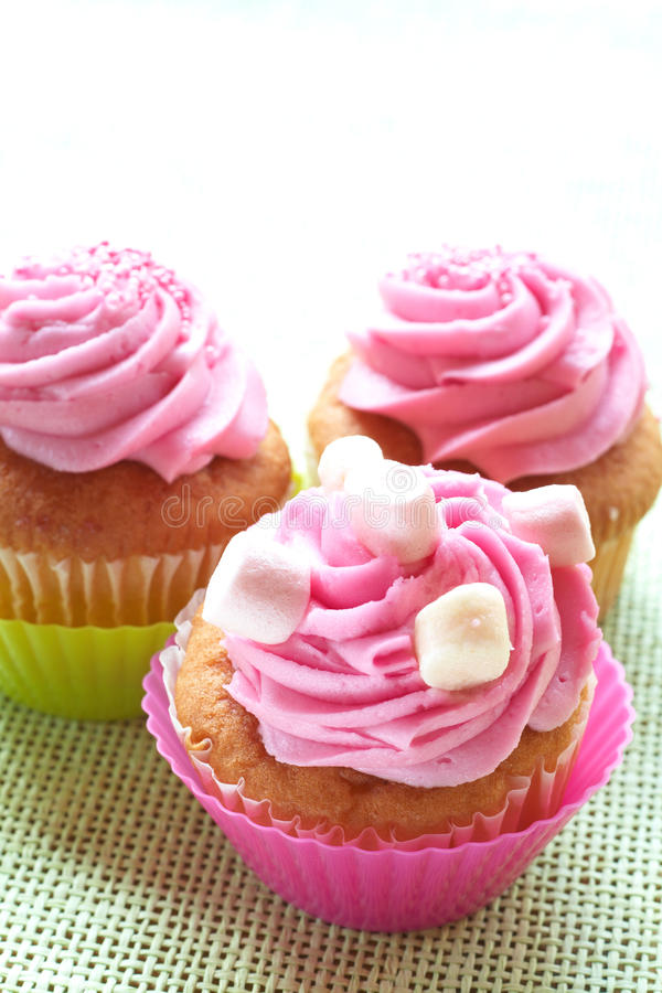 Small vanilla cupcakes with icing